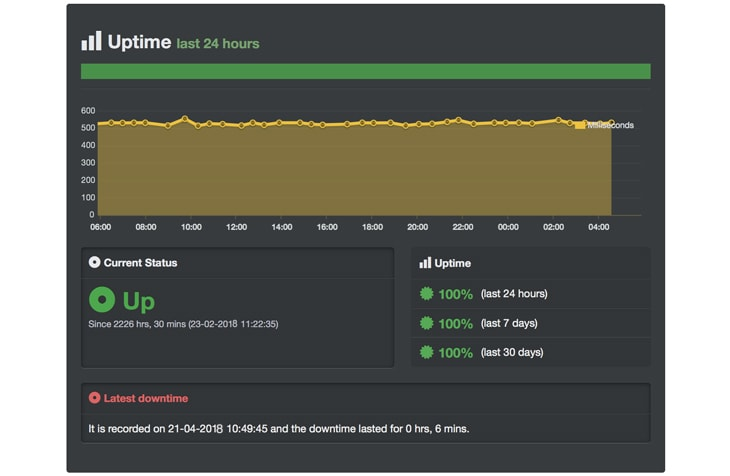 domainracer uptime server result