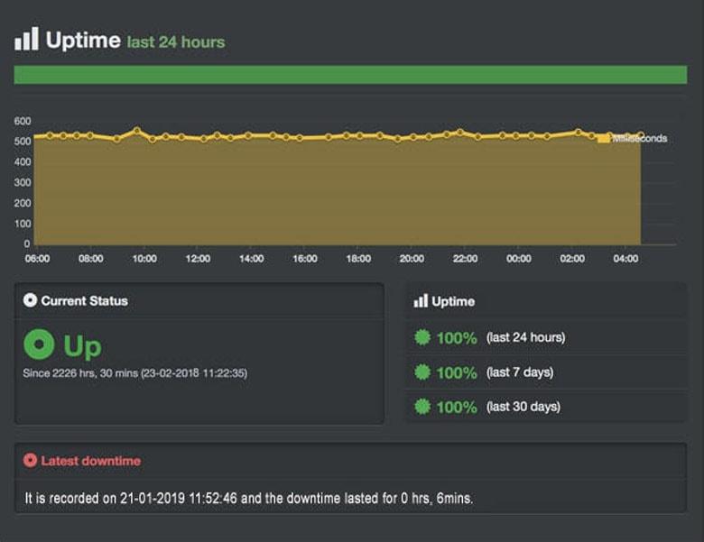 domainracer uptime test result