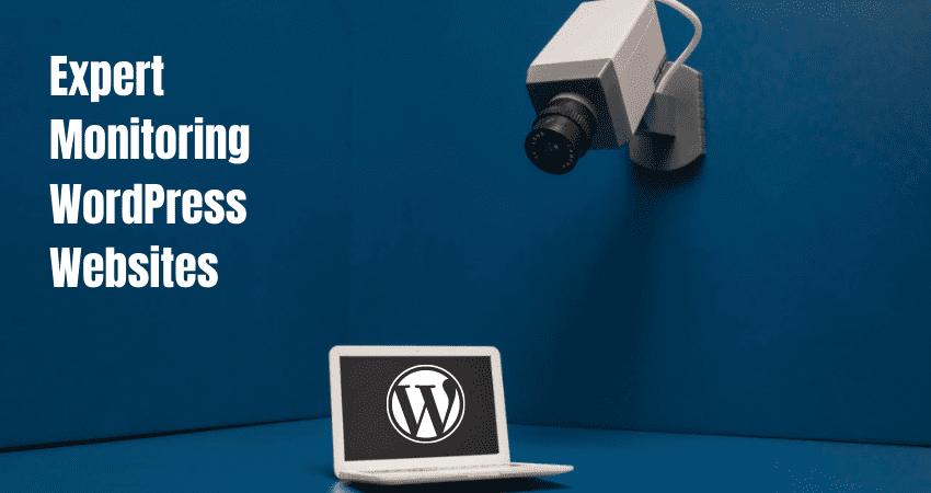 ssd wordpress security